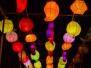 2015-01-02 China Light Utrecht